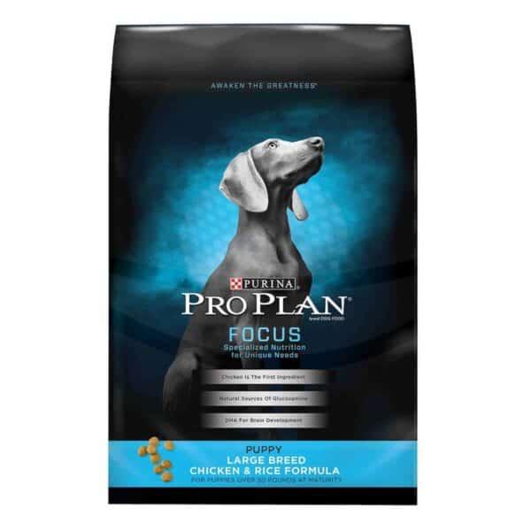 Purina Pro Plan Focus Puppy Large Breed, 18 lb